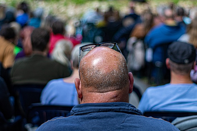 the-balding-4266543_640